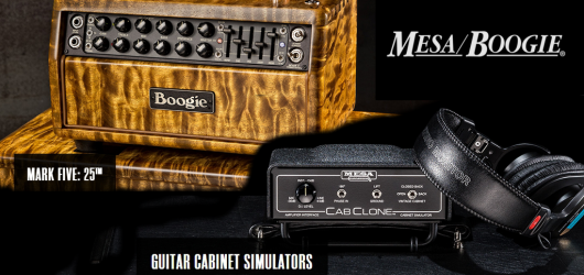 Mesa_Boogie_post_MarkV25_CabClone